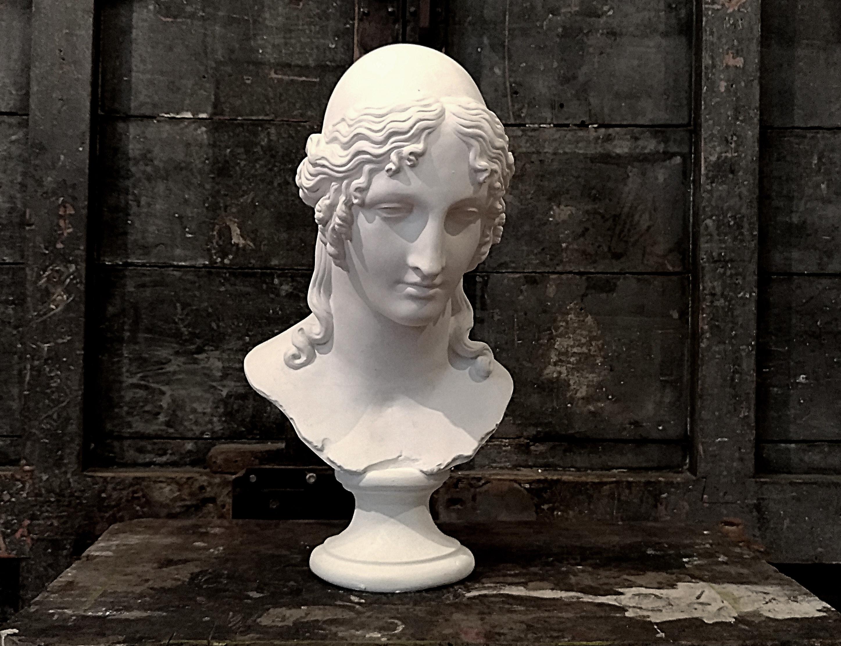 Elena di Troia Image