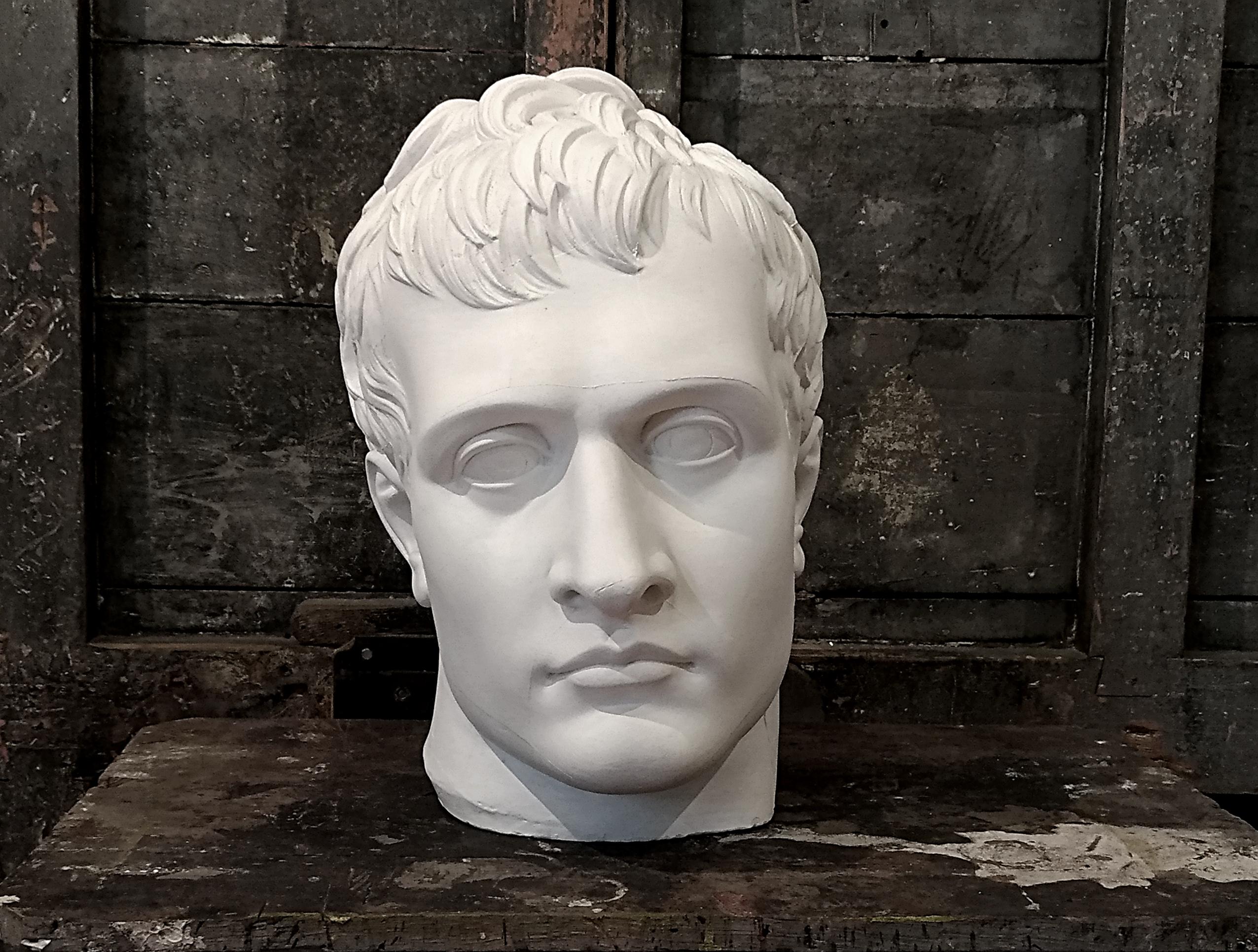 Napoleone Bonaparte Image